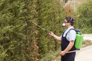 pest control charleston south carolina