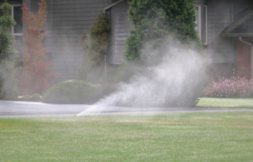 Check the Mosquito Population with Residential Misting Systems