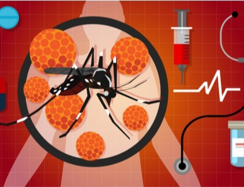 Can Mosquitos Spread Diseases?