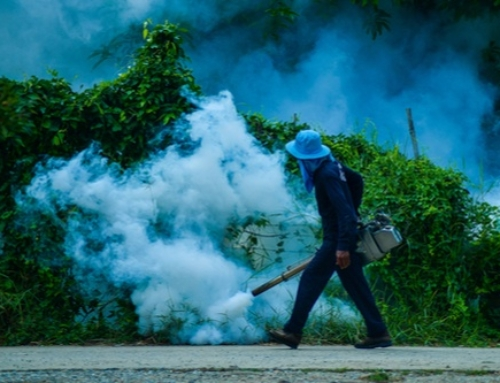 How Effective Are Mosquito Misting Systems?